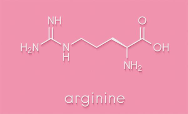 アルギニンで成長ホルモンの分泌を促進