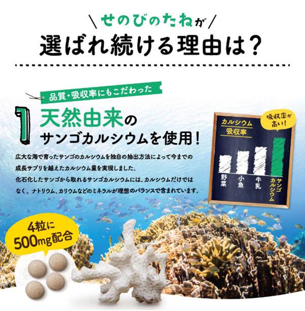 天然由来のサンゴカルシウムを使用